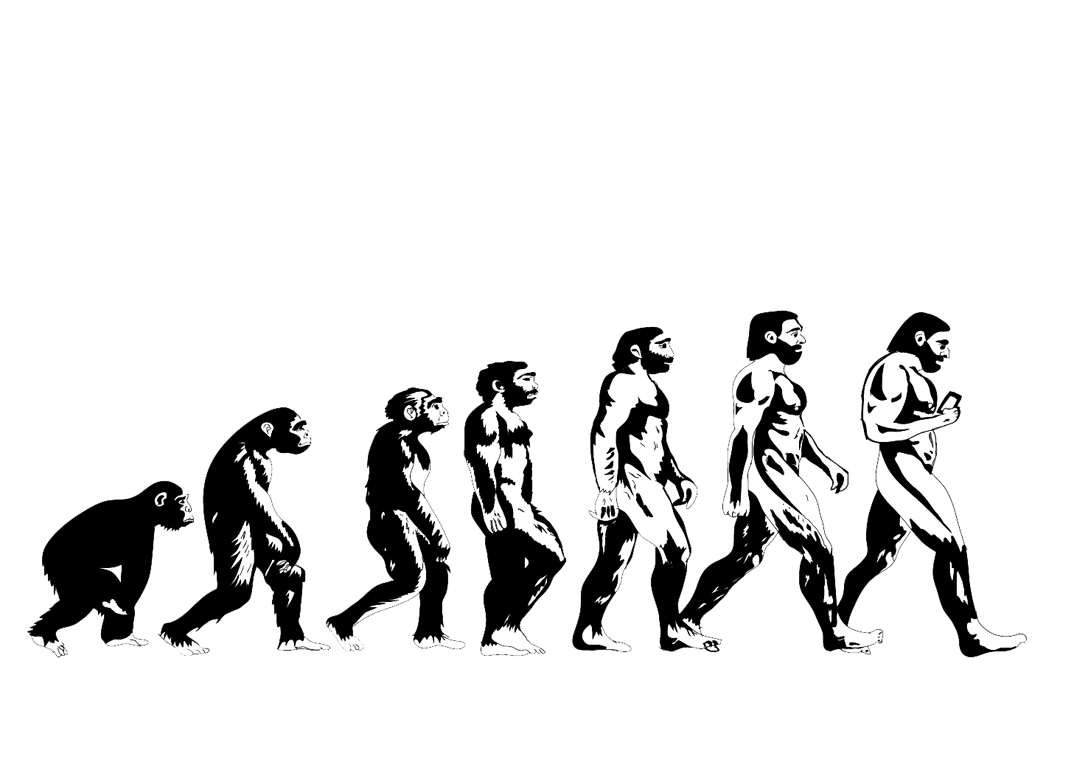 Evolution Wallpapers