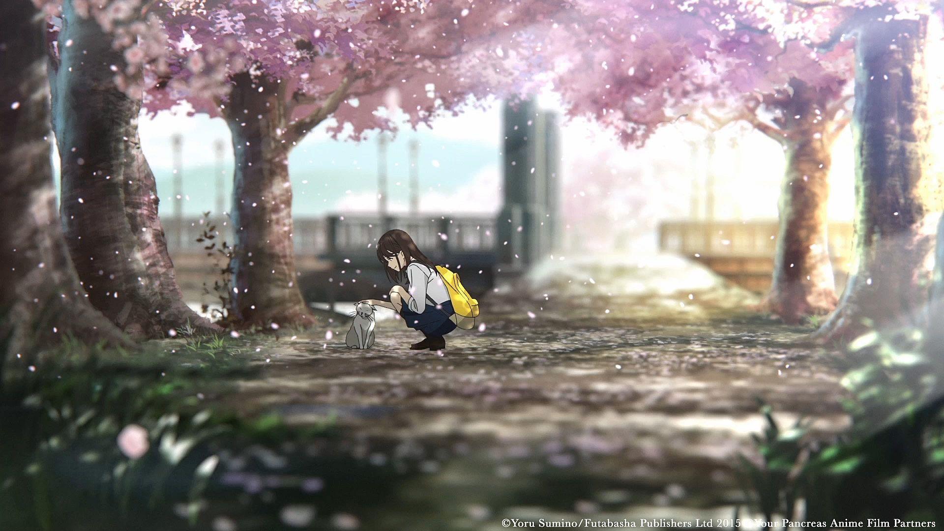Anime, i want to eat your pancreas, haruki shiga, sakura yamauchi, hd wallpaper · keywords: I Want To Eat Your Pancreas Anime HD Wallpapers ...