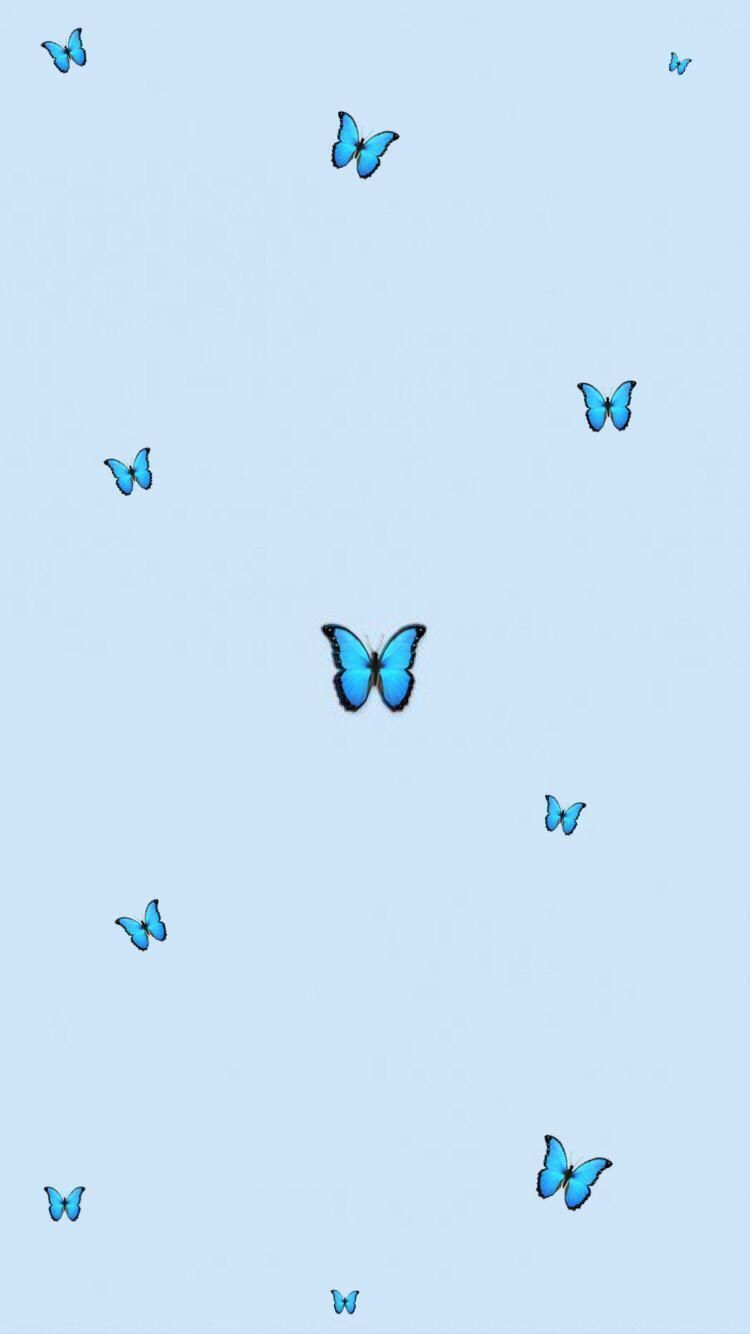 Download butterfly aesthetic wallpaper for free, use for mobile and desktop. Blue Aesthetic Butterfly Wallpapers - Wallpaper Cave