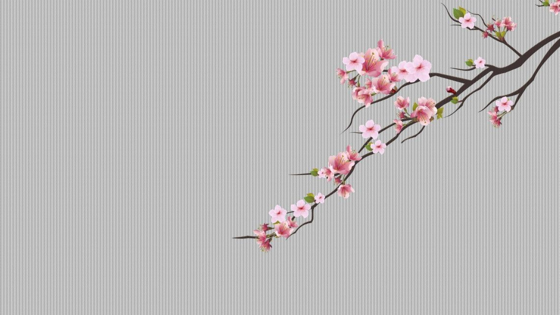 Cherry Blossoms Aesthetic Wallpapers Wallpaper Cave