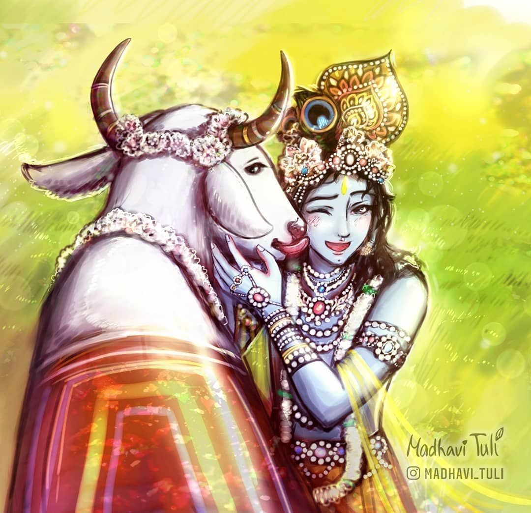 Cute Krishna Images With Cow - Novocom.top