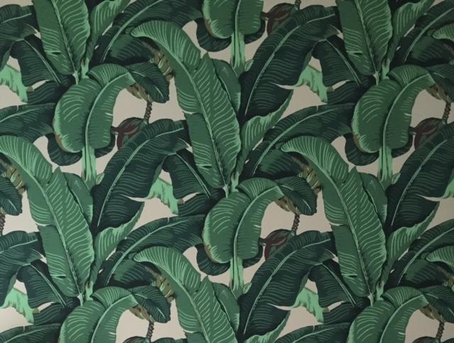 Download Beverly Hills Banana Leaf Wallpaper Gallery