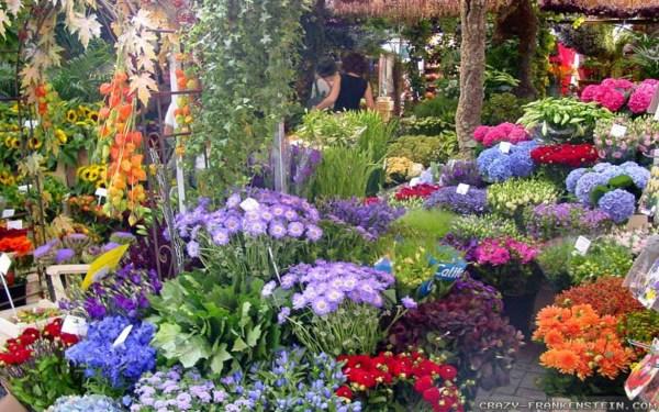 beautiful flower gardens pinterest Beautiful Flower Garden | FLOWER