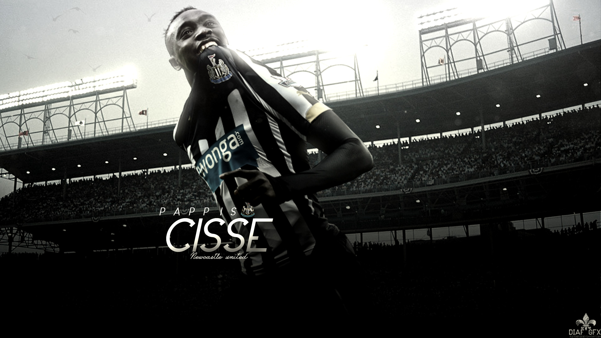 Give your home a bold look this year! Newcastle United Wallpapers (64+ pictures)