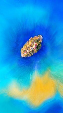 Wallpaper Sea Lion Galapagos Island Ecuador Underwater Close Up Diving Tourism Bottom