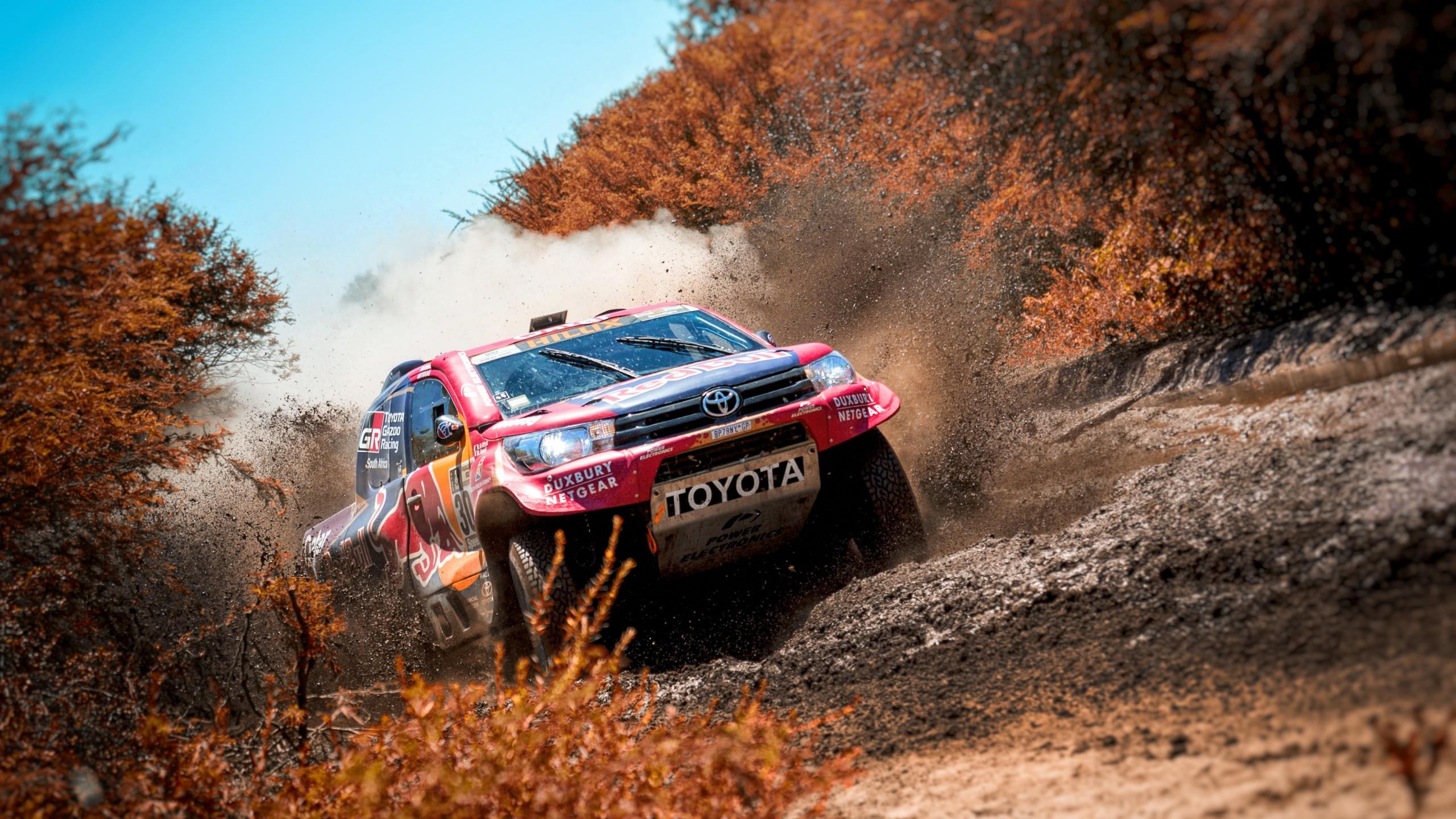 Wallpaper Rally Sand Forest 4k Sport 20159