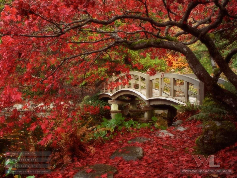 Japanese Garden, Royal Roads University, British Columbia
