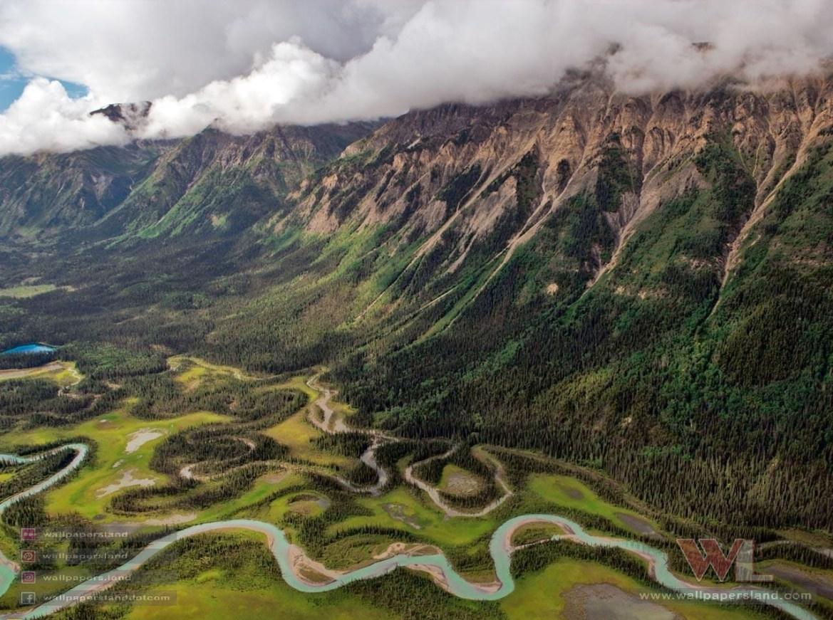 Natures & Landscapes