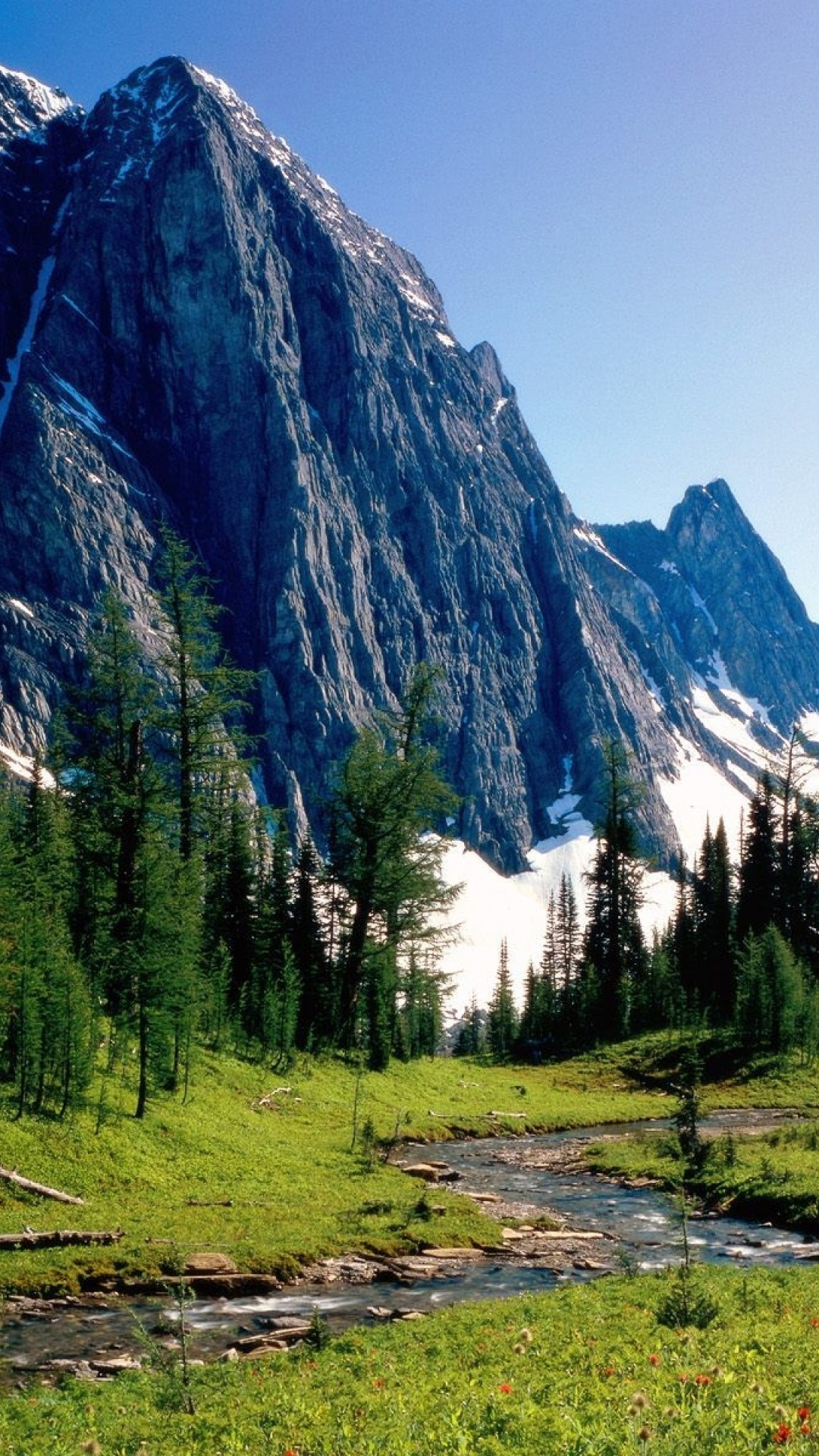 1080x1920 Mountains Trees Stream Amp Grass Desktop Pc And