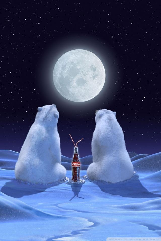 Polar Bears 4K HD Desktop Wallpaper For 4K Ultra HD TV