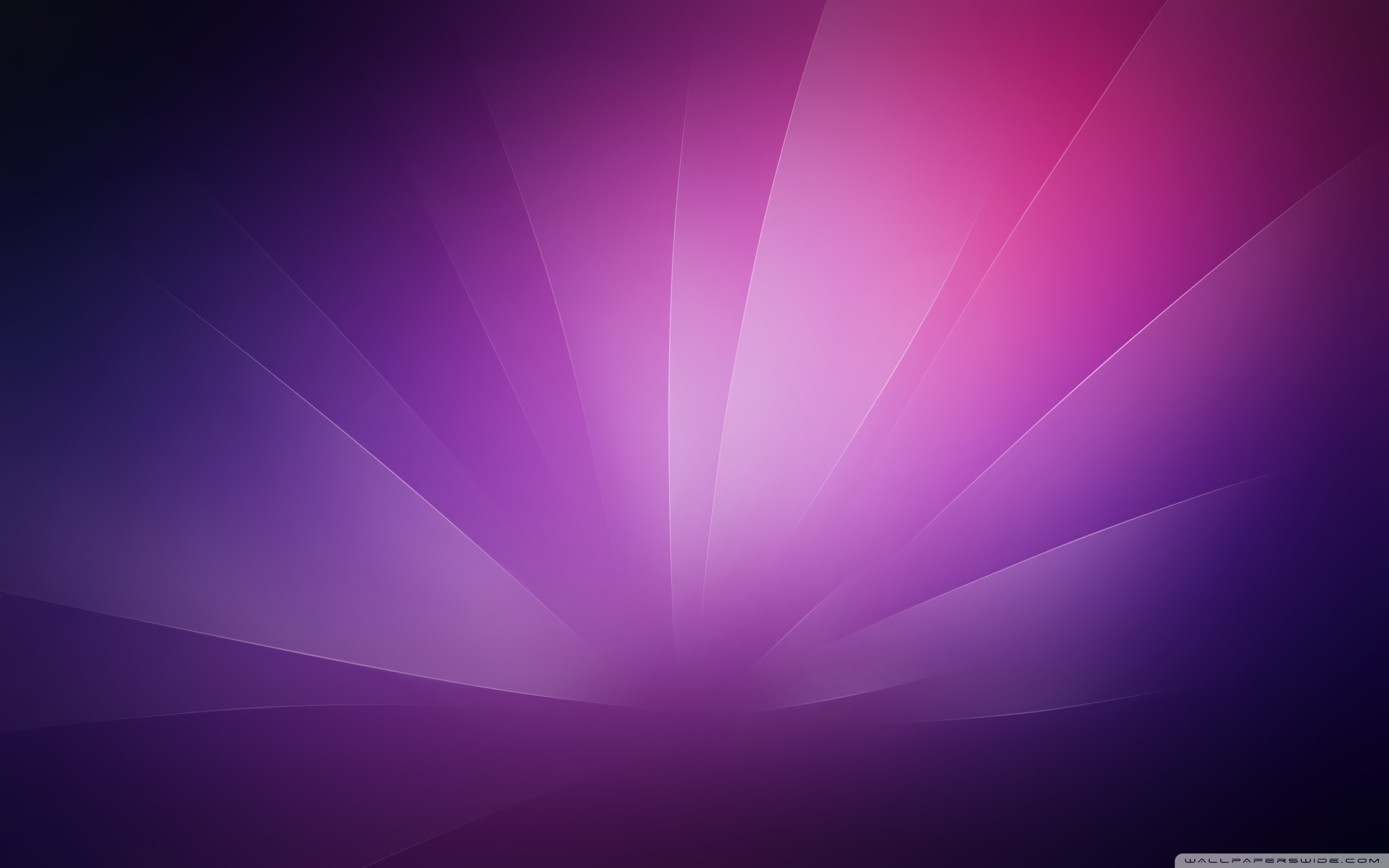 Purple Minimalist Background        4K HD Desktop Wallpaper for 4K Ultra     Wide