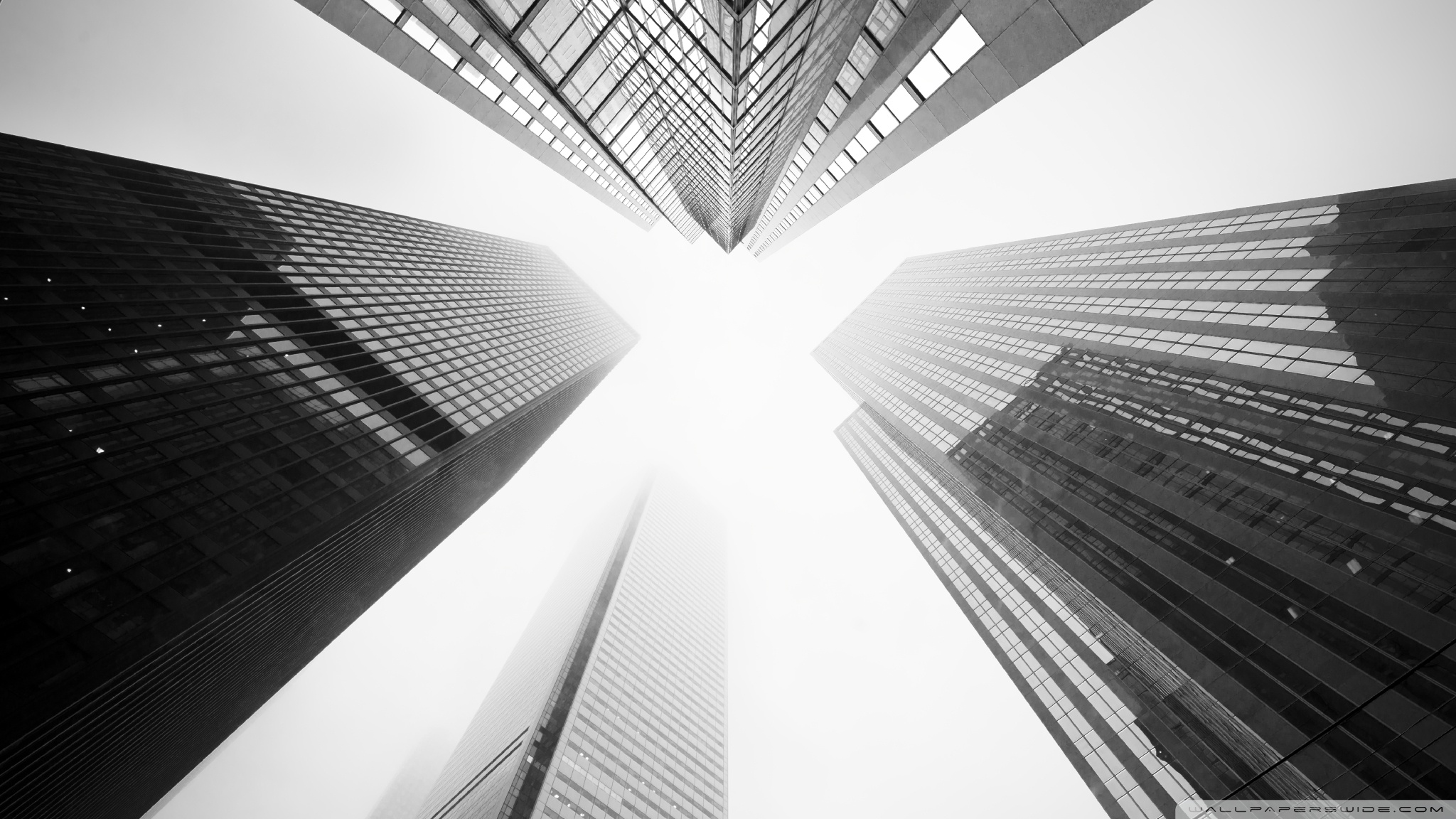 Toronto Skyscrapers Black and White        4K HD Desktop Wallpaper for     Standard