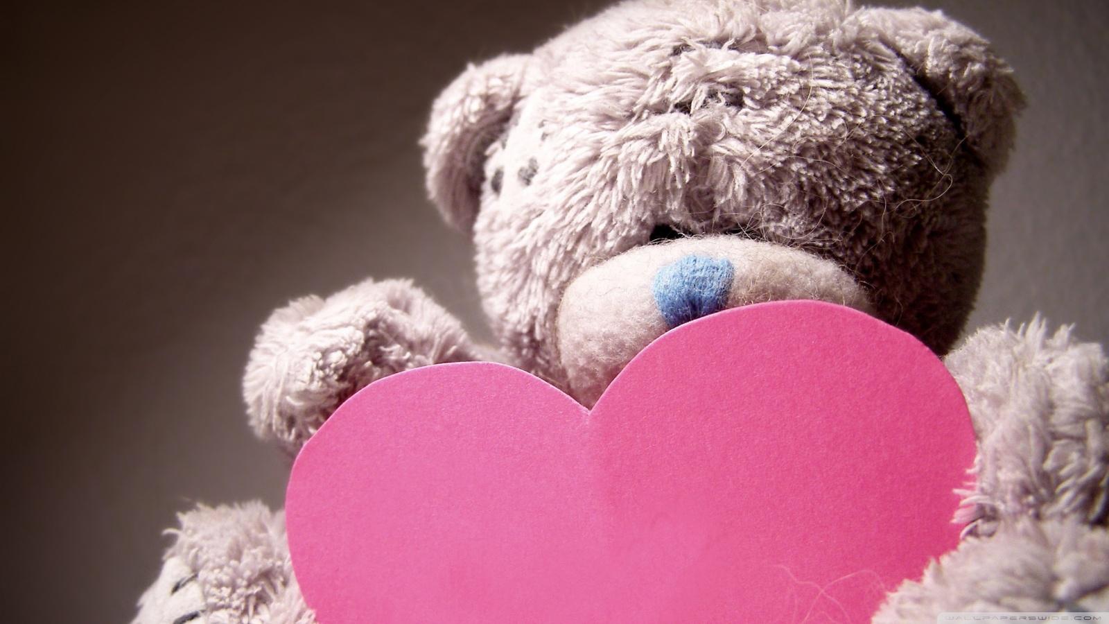 valentines day teddy bear ❤ uhd desktop wallpaper for ultra hd 4k