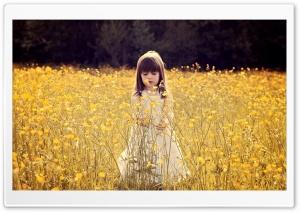 Cute Child In A Flower Field