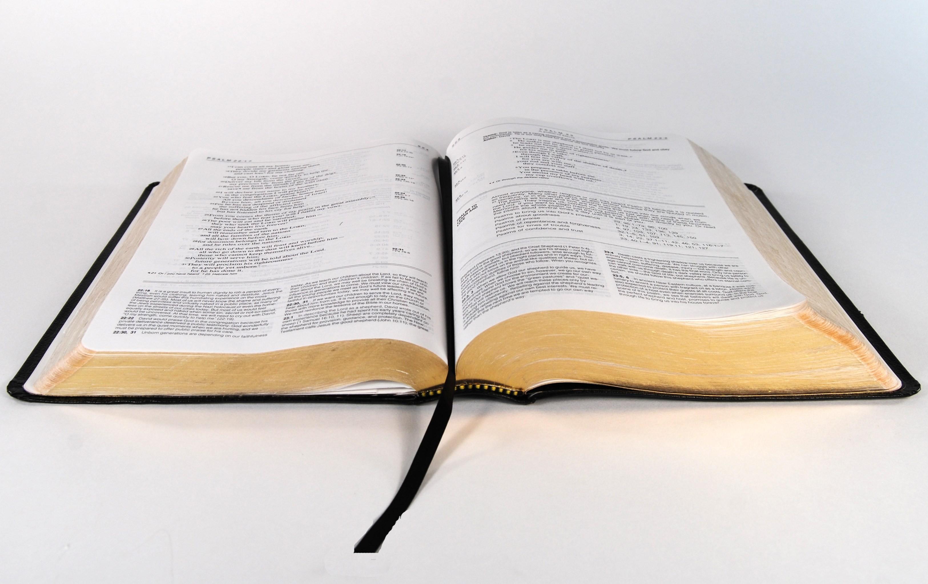 Open Bible Background Download Free Beautiful Full Hd