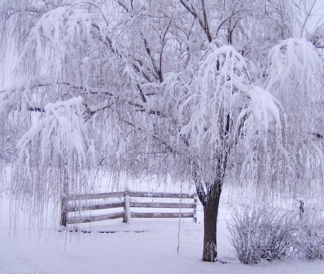 Scenic Winter Cool Backgrounds Wallpapers