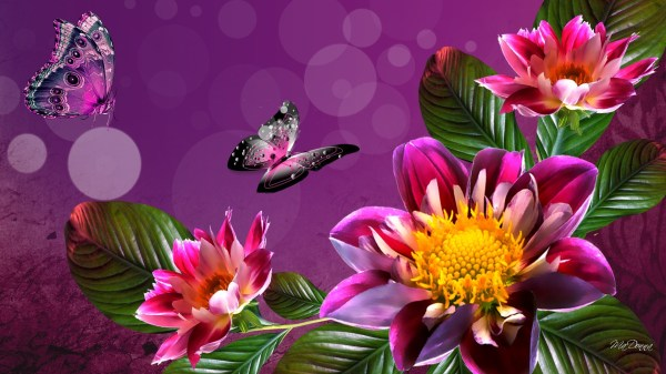 Spring Flower Wallpaper Backgrounds ·① WallpaperTag
