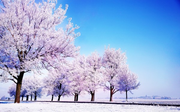 Winter background images 183 Download free awesome High