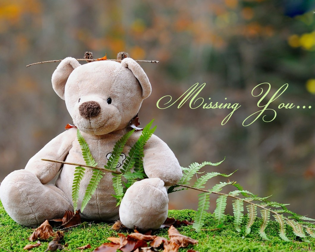 Teddy Bear Wallpapers For Mobile Wallpaper Galleries