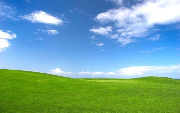 Windows XP HD Wallpaper 183 WallpaperTag