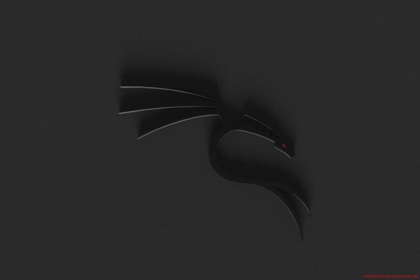 Kali Linux Black Wallpaper Joshviewco