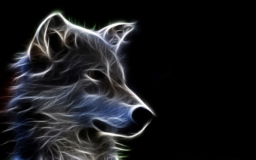 Dog Wallpaper 3D Animal For Your PC Dekstop