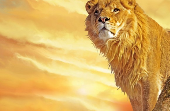 Lion King In Forest Animal Photo Picture Gallery