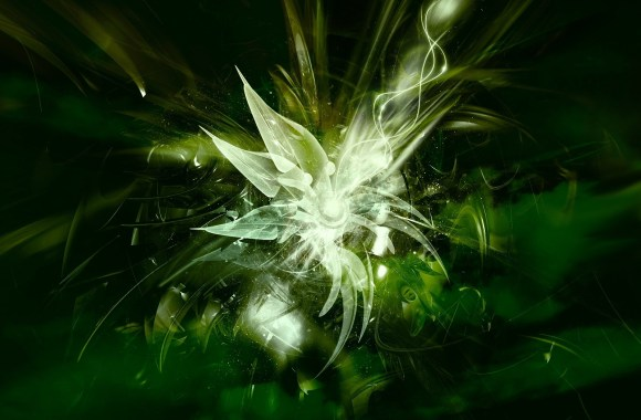 Beautiful Abstract Green Flower HD Wallpaper Free Download