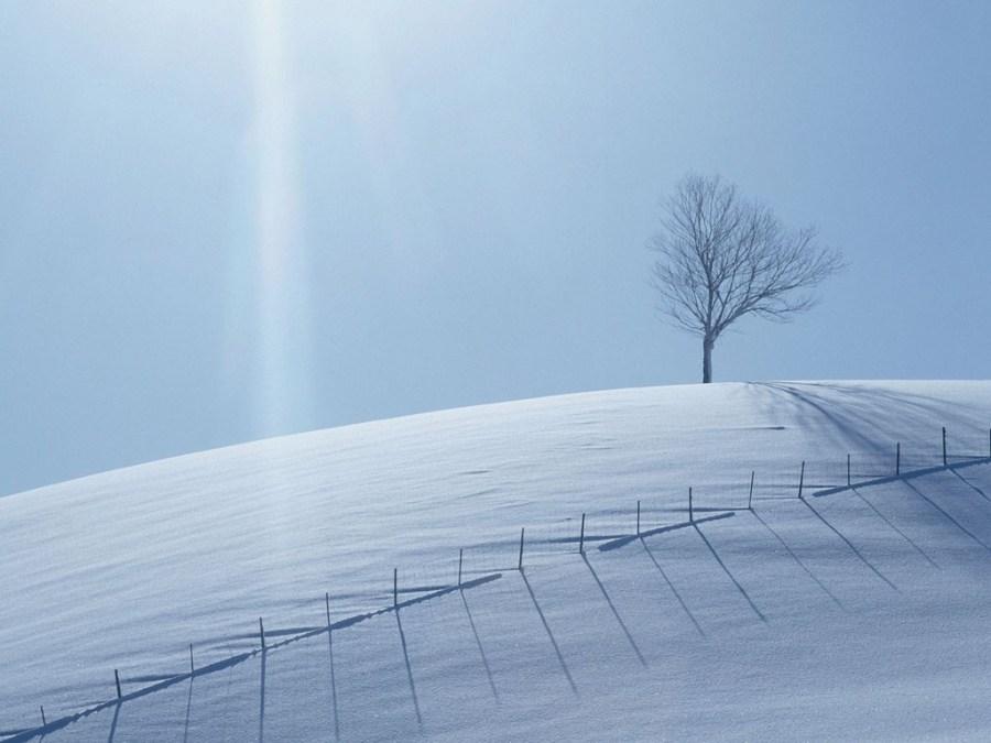 Beautiful White Ice Nature Desktop Wallpaper HD Widescreen Free