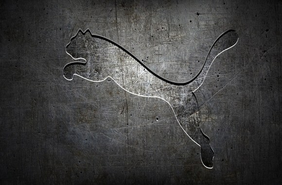 Grey Puma Logo Top Best HD Wallpaper Image Picture Free Download
