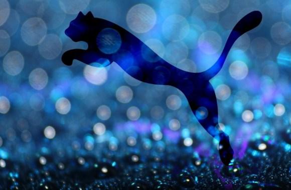 Puma Logo Water HD Wallpaper Picture Image Free Download