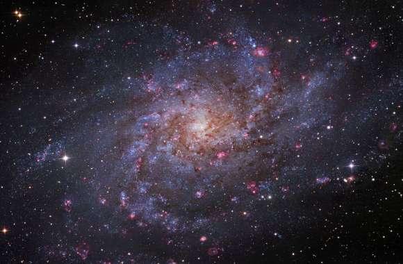 Triangulum Galaxy HD Wallpaper