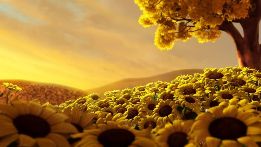 sun flowers with yellow sky
