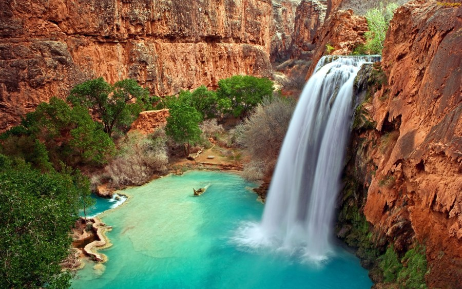 Havasu Falls in Grand Canyon HD Wallpaper by Wallsev.com