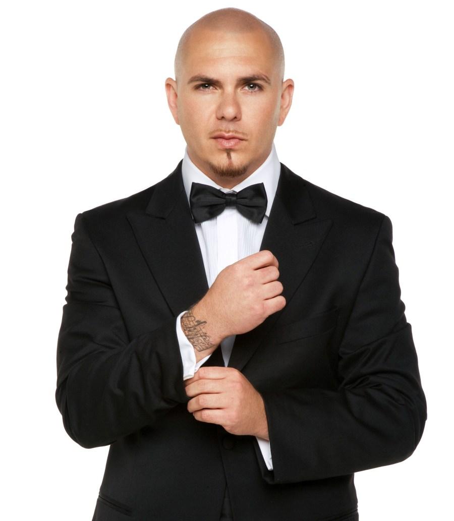 Pitbull HD Wallpaper by Wallsev.com