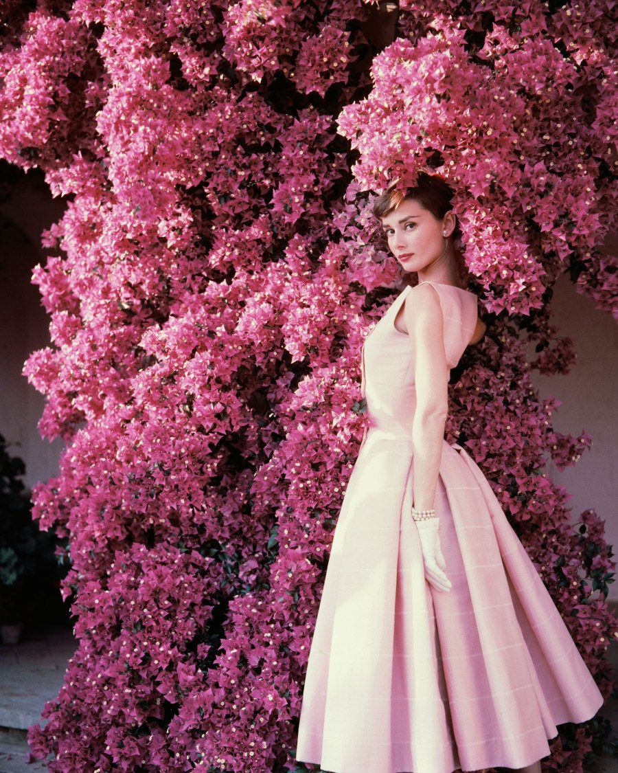 Audrey Hepburn 1955 HD Wallpaper