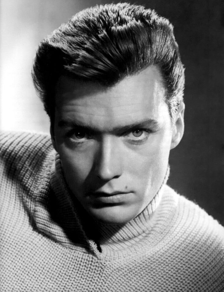 New 1960S Hairstyles For Men Top Men Haircuts Dont Drink The Water In 2019 Actor Clint Ideas With Pictures