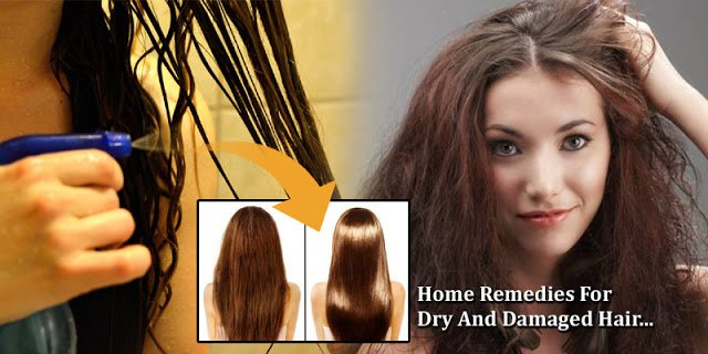 New Home Remedies For Dry And Damaged Hair Get Shiny Soft Ideas With Pictures