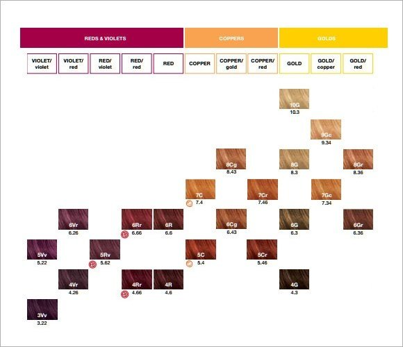 New Baby Hair Color Calculator 11 Sle Hair Color Chart Ideas With Pictures