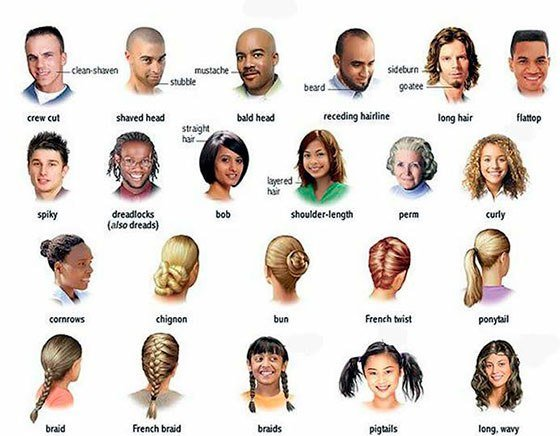 New About Hair And Hairstyles In English Ideas With Pictures