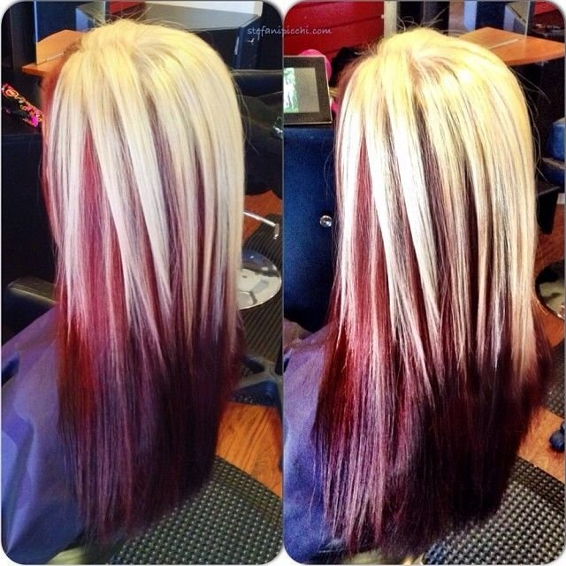 New Best 25 Blonde Underneath Hair Ideas On Pinterest Ideas With Pictures