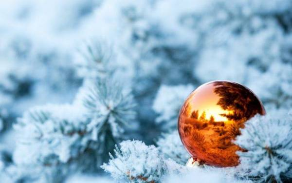 New Year, Snow, Christmas Ornaments, Leaves, Reflection ...