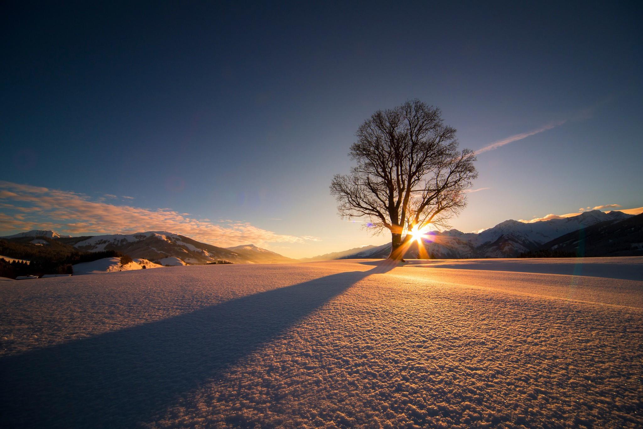 Nature Landscape Trees Winter Snow Mountain Sun