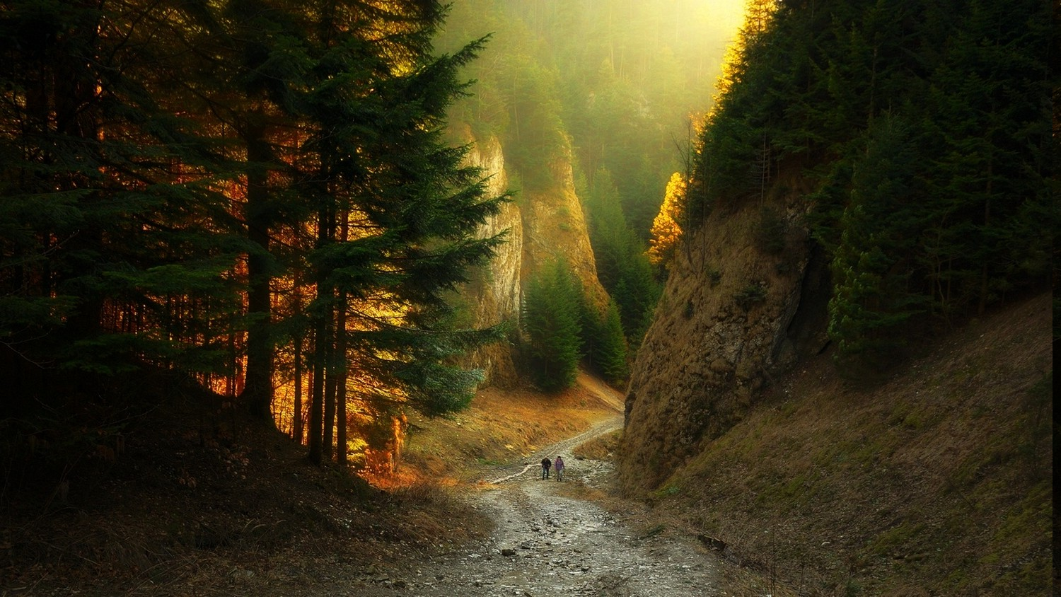 Canyon Path Forest Sunlight Mountain Nature Sunset