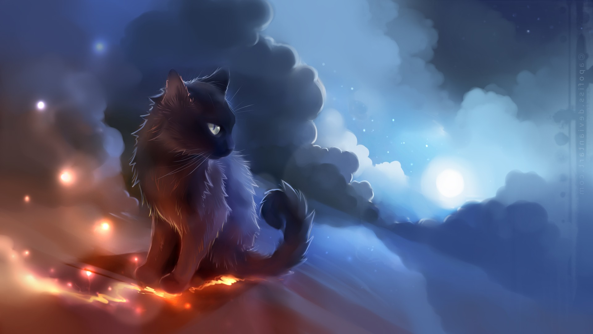 Image result for anime cats