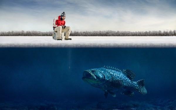 humor, Fishing, Fish, Ice, Winter, Fisherman, Underwater ...