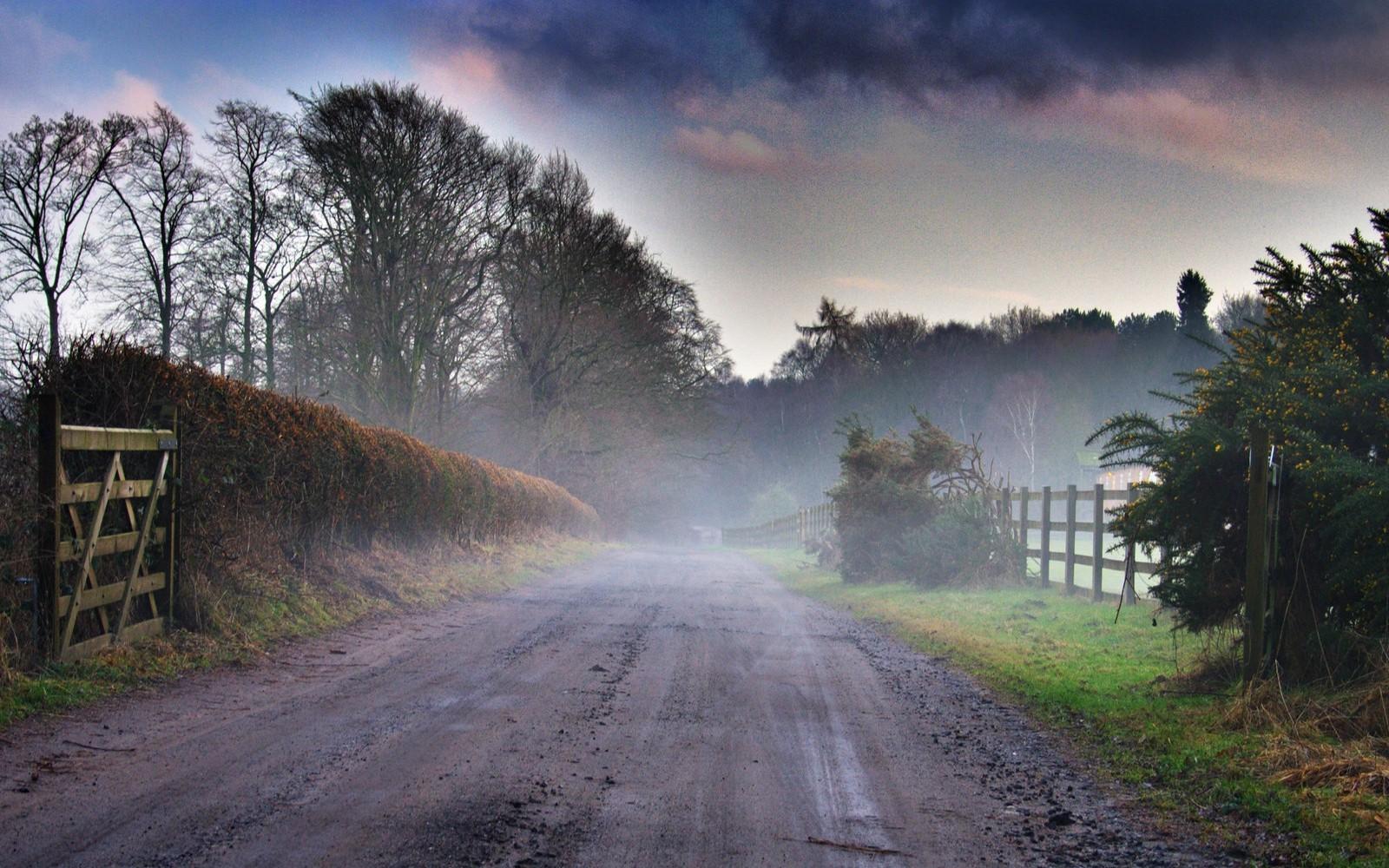 Nature Landscape Sunrise Mist Dirt Road Grass