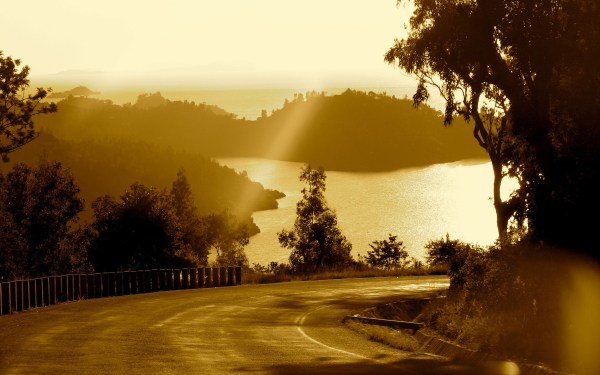 photography, Nature, Landscape, Road, Trees, Plants, Water ...