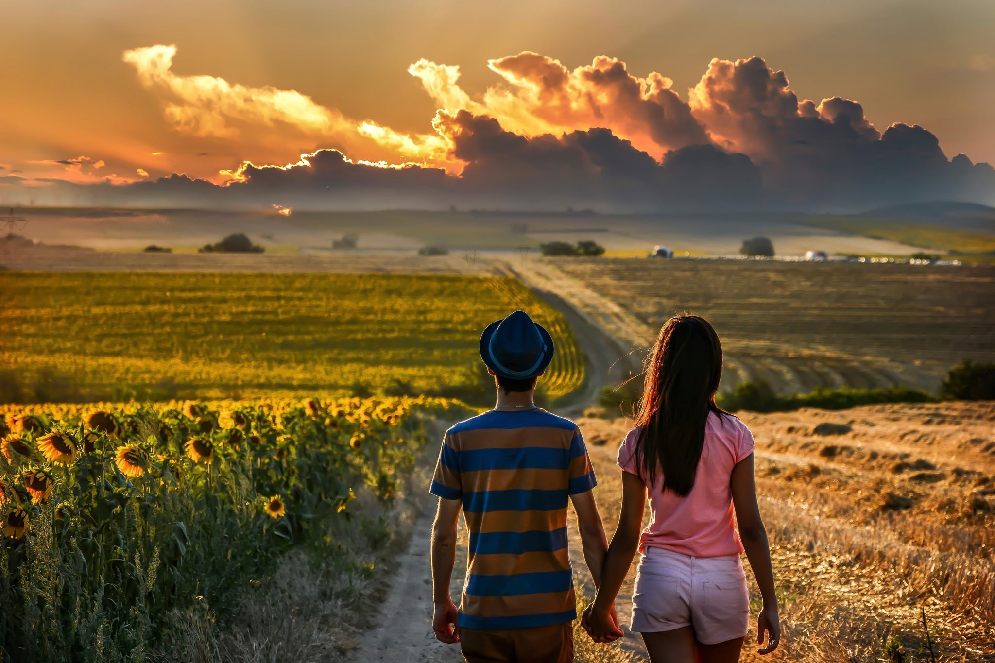 Couple Holding Hands Field