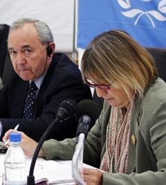 Goldstone at UN